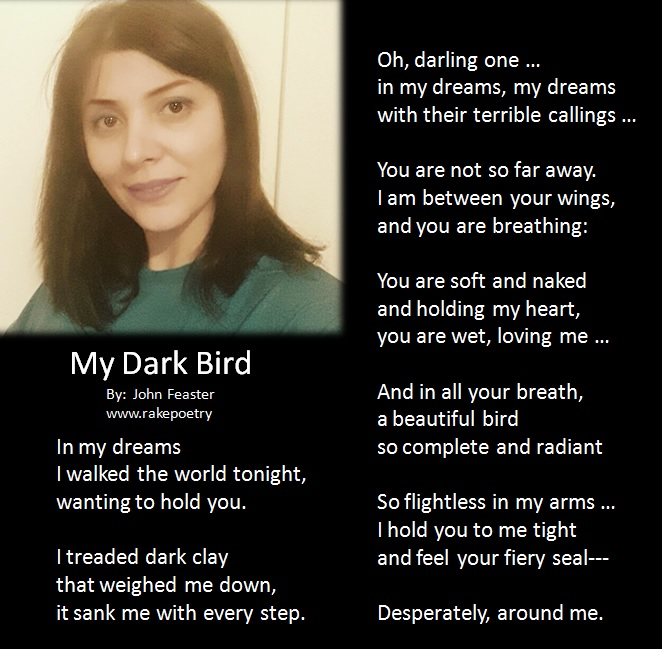 My Dark Bird