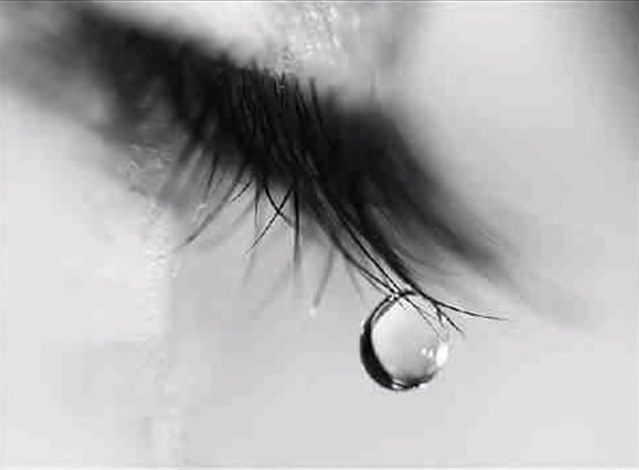 Eyelash Drop